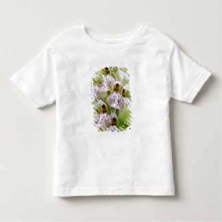Greece, Crete. Orchid in bloom Orchis Toddler T-shirt