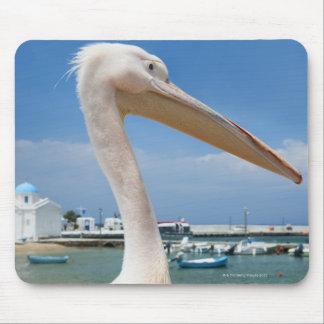 Greece, Cyclades Islands, Mykonos, Pelican on Mouse Pad