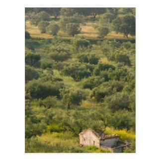 GREECE, Ionian Islands, KEFALONIA, Havriata: Postcard