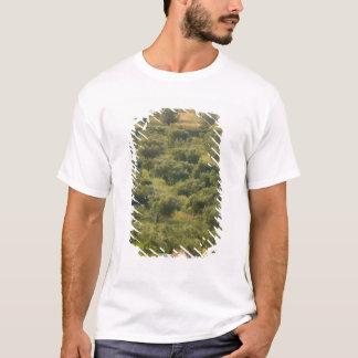 GREECE, Ionian Islands, KEFALONIA, Havriata: T-Shirt