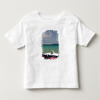 GREECE, Northeastern Aegean Islands, SAMOS, 4 Toddler T-shirt