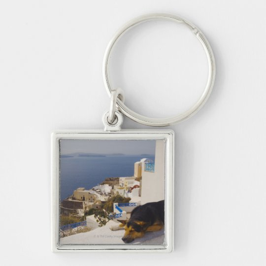 Greece, Santorini Island, Oia City, dog sleeping Keychain