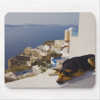 Greece, Santorini Island, Oia City, dog sleeping Mouse Pad
