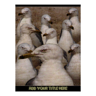 Greedy Scavaging Seagulls - Poster/Print