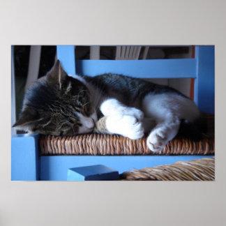 Greek Catnap Poster