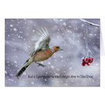 greek christmas card with chaffinch in flight to b