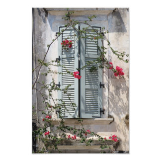 Greek Flowers photo print