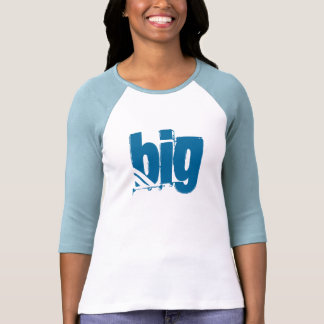 Greek Life: Big (Don't Mess with my Little) T-Shirt