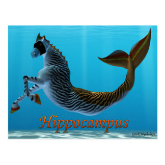 Greek Mythology Postcards: Hippocampus Postcard
