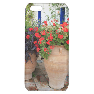 Greek Urns Case For iPhone 5C