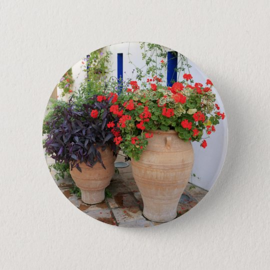 Greek Urns Pinback Button