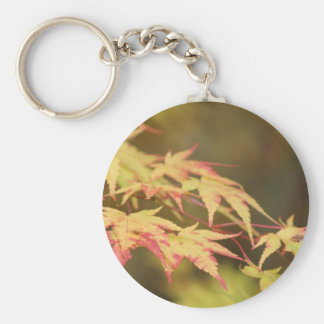 Green Acer Keyring Basic Round Button Keychain
