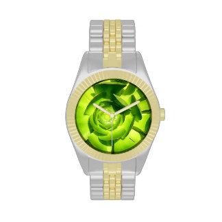 Green Aeonium Succulent Square by Amy Vangsgard Watch