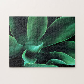 Green Agave Attenuata Jigsaw Puzzle