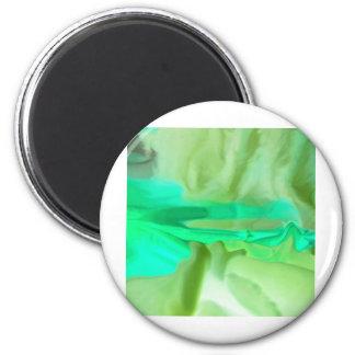 Green Alert 2 Inch Round Magnet