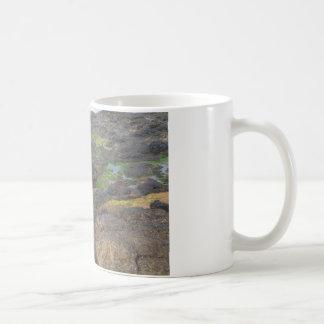 green algae and tide pools on rocks coffee mug