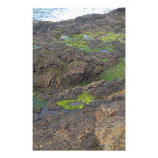 green algae and tide pools on rocks stationery
