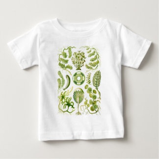 Green Algae Baby T-Shirt