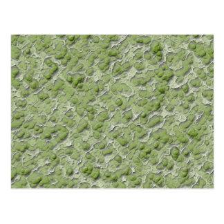 Green algae effect pattern. postcard