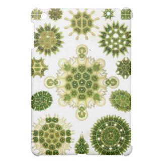 green algae, ipad case