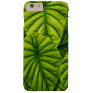 Green Alocasia Cuprea Leaves Hawaii Island Barely There iPhone 6 Plus Case