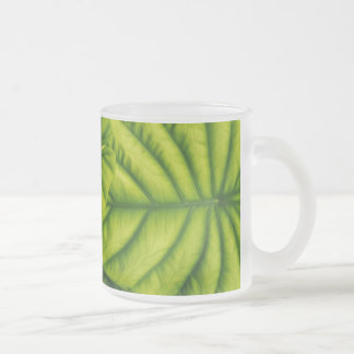Green Alocasia Cuprea Leaves Hawaii Island Frosted Glass Coffee Mug