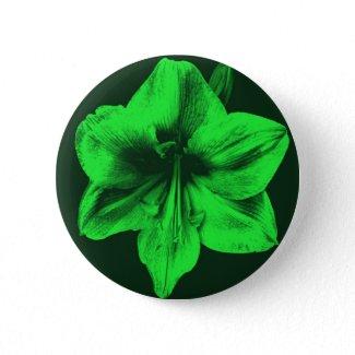 Green Amaryllis zazzle_button