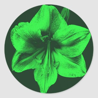Green Amaryllis zazzle_sticker