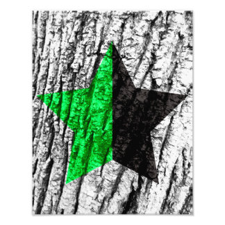 Green Anarchy Star Skin of Tree Photo Print