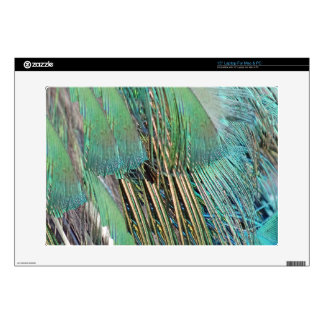 Green And Blue Peafowl Feathers Decals For Laptops