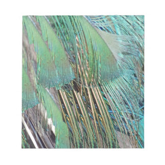 Green And Blue Peafowl Feathers Notepad