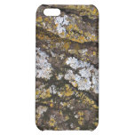 Green and Brown Mossy Wood Protective Case iPhone 5C Cases
