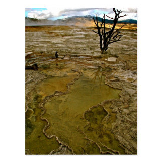 GREEN AND BROWN VOLCANIC MINERAL DEPOSITS POSTCARD