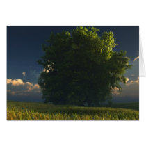 tree, prairie, clouds, landscape, Card with custom graphic design