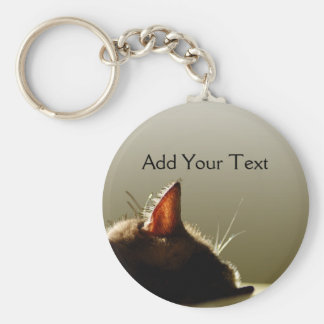 Green and Grey Cat Nap Keychain