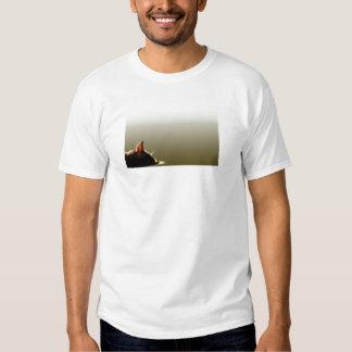 Green and Grey Cat Nap T Shirt