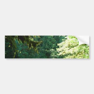 Green and Lush Car Bumper Sticker