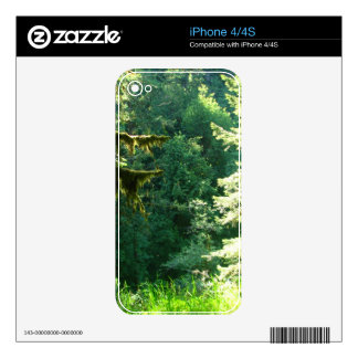Green and Lush iPhone 4 Skins