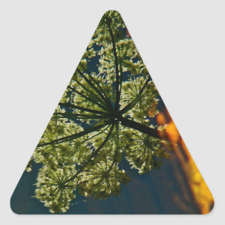 GREEN AND ORANGE REFLECTIONS IN A POND TRIANGLE STICKER