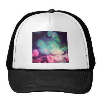 Green and pink anemone trucker hat