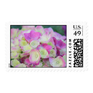 Green and Pink Postage Stamp