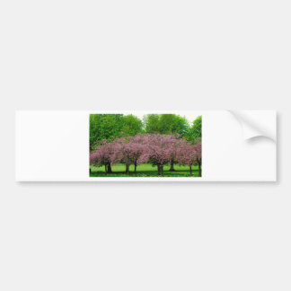 Green and Pink Spring Trees Bumper Stickers