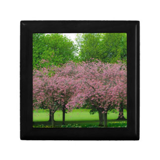 Green and Pink Spring Trees Gift Box