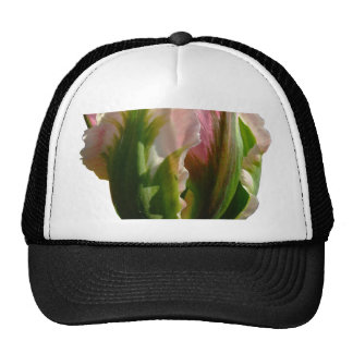 Green and Pink Tulip Mesh Hats