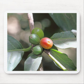 Green and Red Coffee Beans Mouse Pad