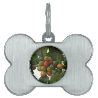 Green and Red Coffee Beans Pet Tag