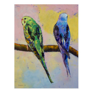 Green and Violet Budgies Postcard