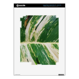 Green and White Leaf Design Product Decals For iPad 3