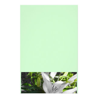 Green and White Lily in Bloom Stationery