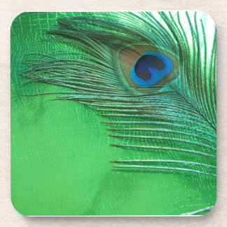 Green and White Peacock Feather Still Life Beverage Coasters